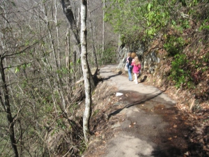 Hiking along trail to Laurel Falls